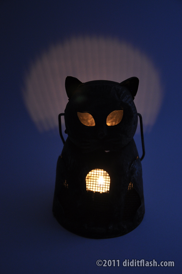 Kitty Cat Lantern